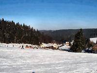 Schlittenfahren in Mühlleithen